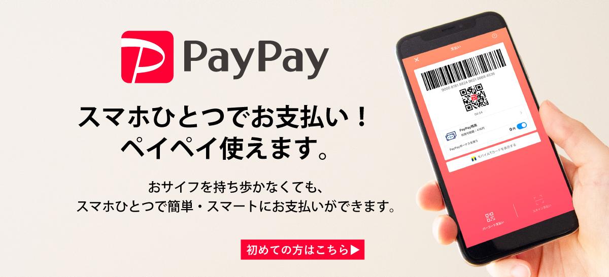 paypay_pc.jpg